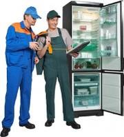 Ремонт  бытовых холодильников в Тюмени
